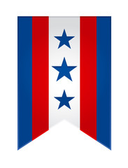 Election flag USA icon