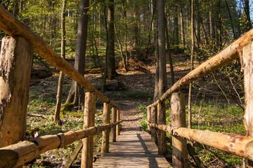Wanderweg im Harz Holzbrücke über Bachlauf