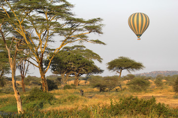 Flying green and yellow balloon flying over the savannah