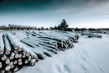 Lumber winter.