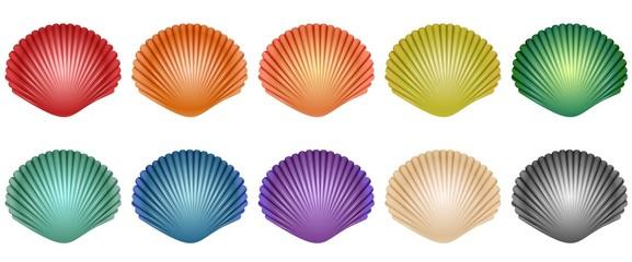 Realistic Seashells (10 Styles)