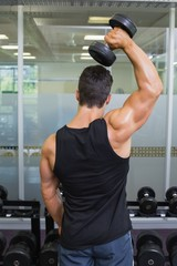 Rear view of a muscular man exercising with dumbbell