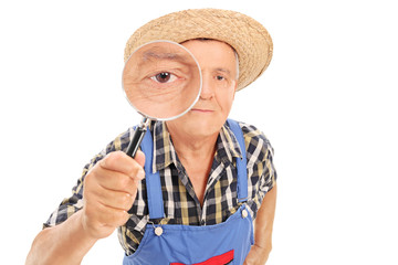 Mature farmer looking through a magnifying glass