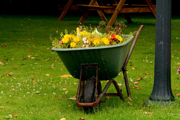Wheelbarrow flower pot