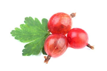 Red gooseberry fruit with leaf on white