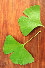 Ginkgo biloba leaves on wooden background