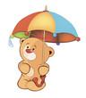 A bear cub and an umbrella