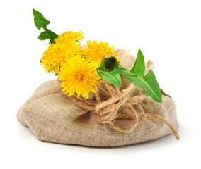 Beautiful wildflowers, dandelions, milfoil in the sacking
