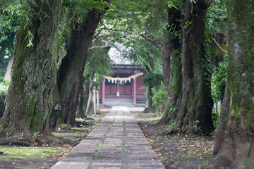 Japanese front approach to a shrine