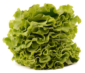 salad on white background