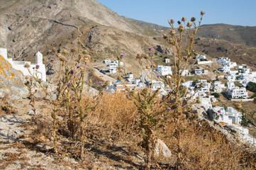 Insel Serifos im Spätsommer bei Dürre - griechische Insel