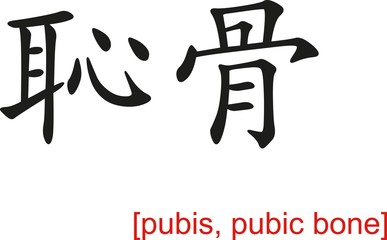 Chinese Sign for pubis, pubic bone