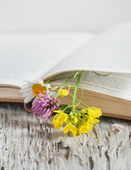 Flowers in open book