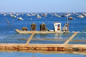 Plates de retour de pêche, Bassin d'Arcachon