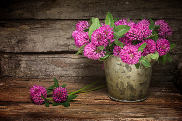 Red clover meadow