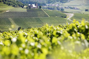 champagnerregion, Frankreich