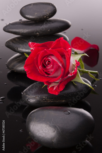 Spa stone and rose flowers still life. Healthcare concept. - 67385126