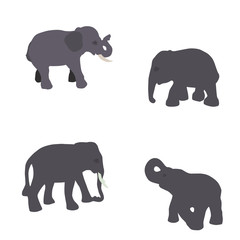 Set of Elephant Isolated on White Background. Eps10.