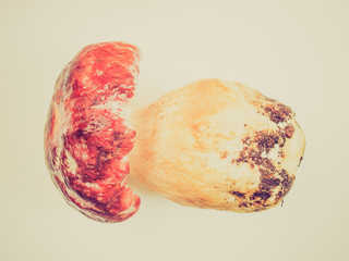Retro look Porcini Mushroom