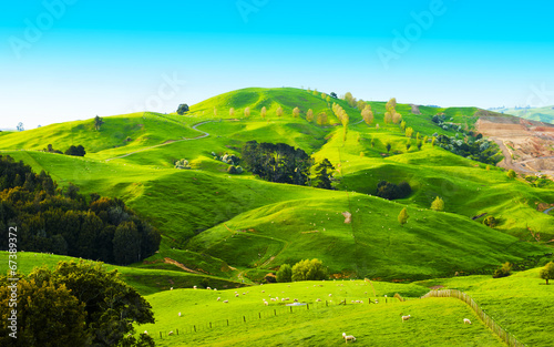 In de dag Nieuw Zeeland Hills of the New Zealand