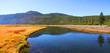Scenic Yellowstone river
