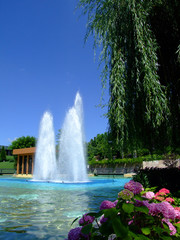 Fountain and garden