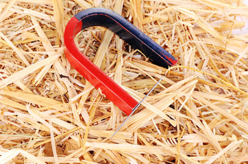 Magnet and needle on hay background