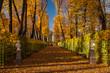 """Summer garden"" park in Saint Petersburg"