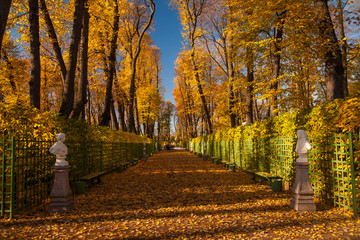 """Summer garden"" park in Saint Petersburg"