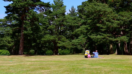 Father and child having a picnic in the park