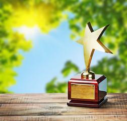 star award at the table