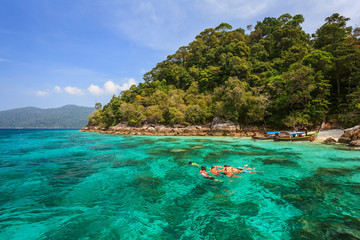 snorkel diving at Koh Lipe of Andaman sea, Thailand