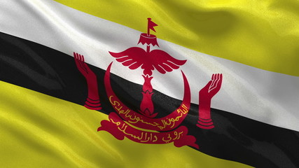 Flag of Brunei waving in the wind - seamless loop