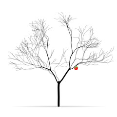 Tree without leaves with one red apple. Raster