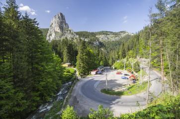 Curvy road through forest