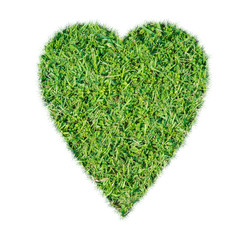 Green grass ecological heart icon