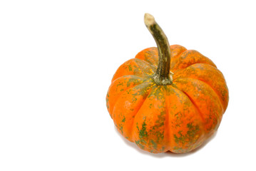 Small Wripe Pumpkin Isolated Over a White Background