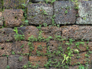 wall detail at Angkor Thom