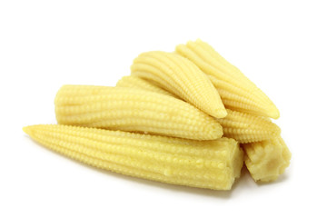 young corn on the cob on a white background