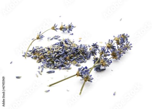 Tuinposter Lavendel dry lavender