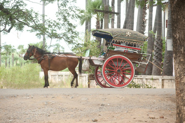 Carriage in Inwa ancient city 3..jpg