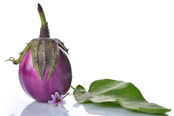 melanzana freschissima