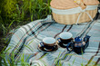 summer picnic - 67421138