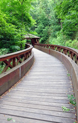 Wooden bridge in the country