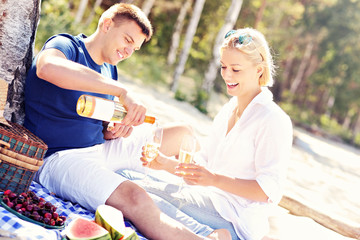 Adult couple having picnic at the beach