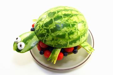 Melonen-Schildkröte
