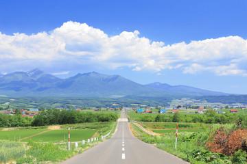大雪山への道