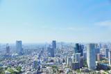 Fototapety 東京タワーからの眺め