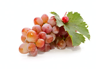 The bunch of the fresh appetizing grapes