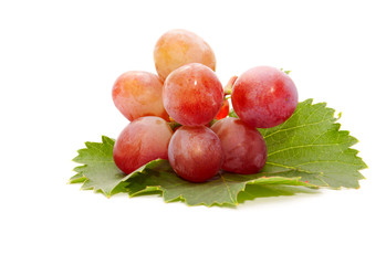 The cluster of delicious grapes